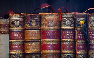 Classic books: An image of leather bound books.
