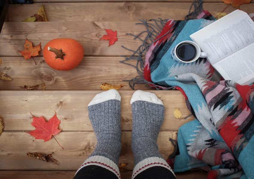 Fall Reads featured image