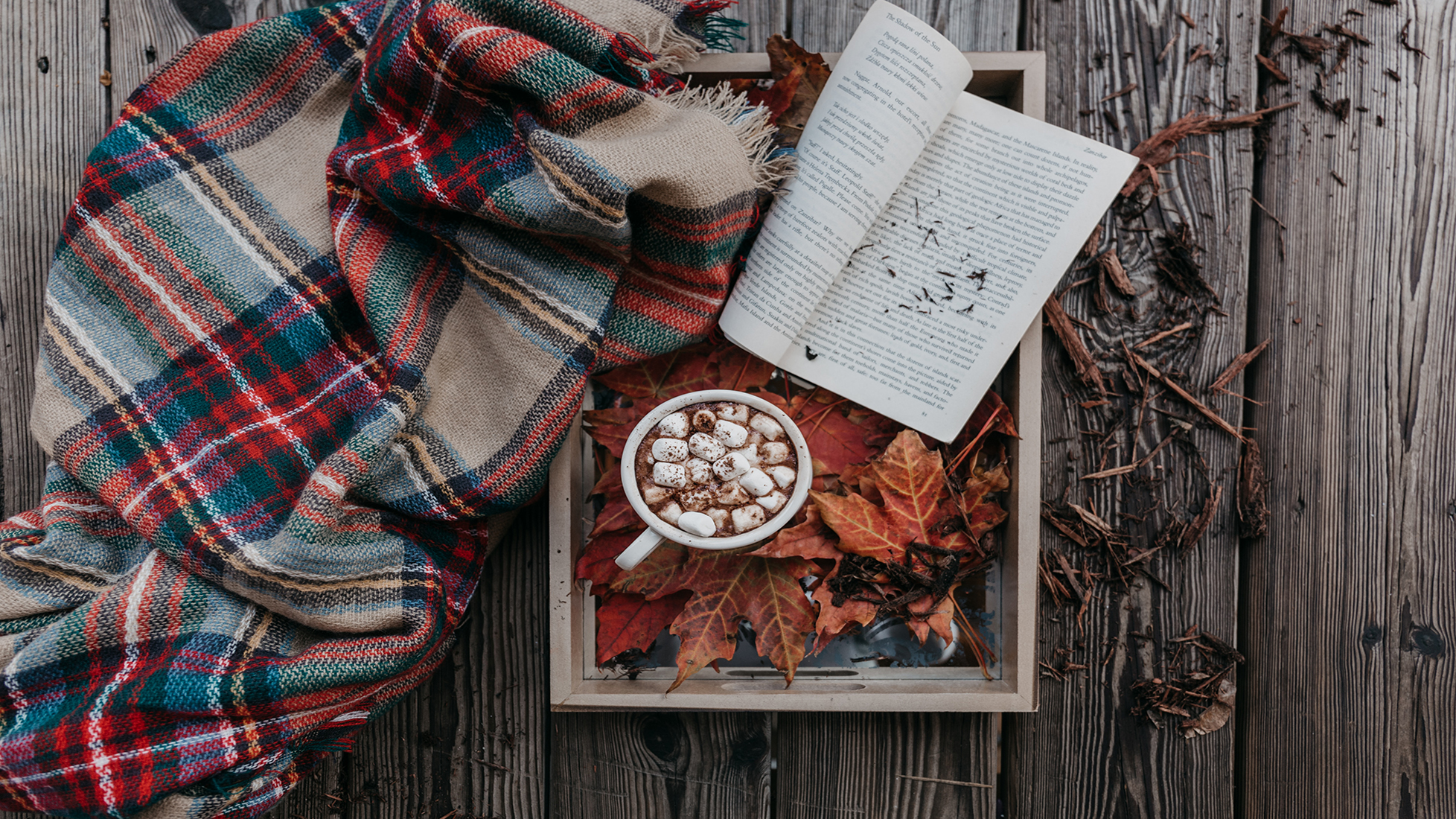 Fall Books Featured Image