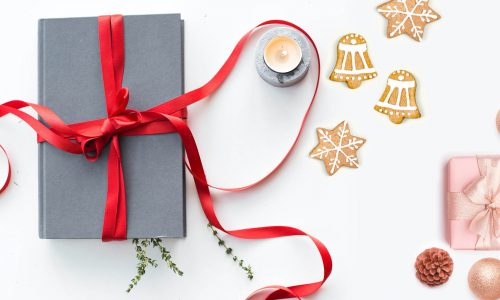 Books for holidays article image
