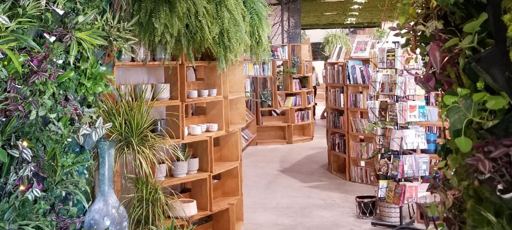 Little Sister Bookstore article image